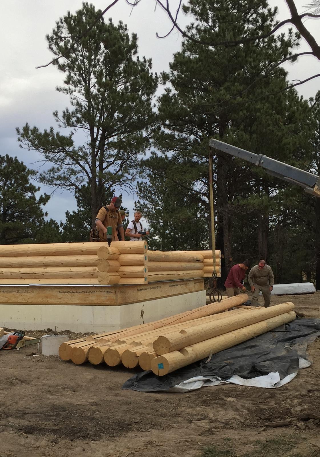 Logs Day 1 (9)