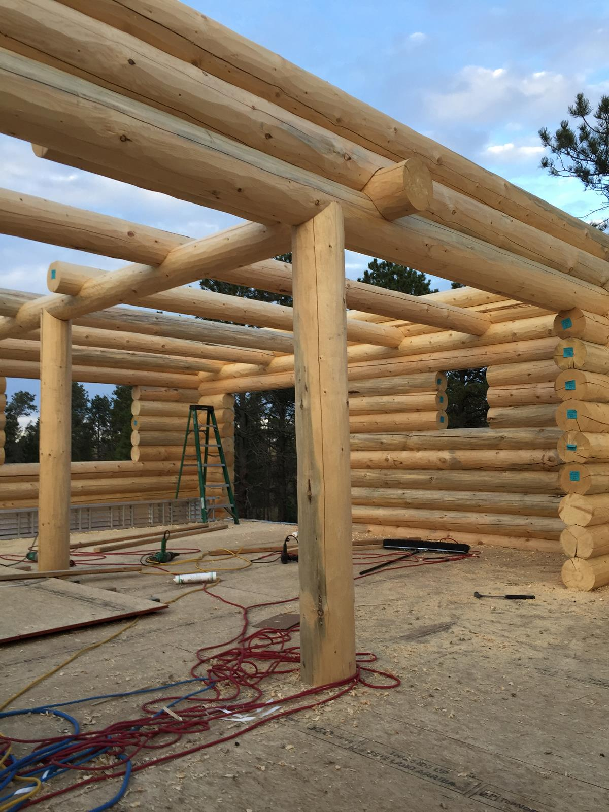 Logs Day 3 (14)