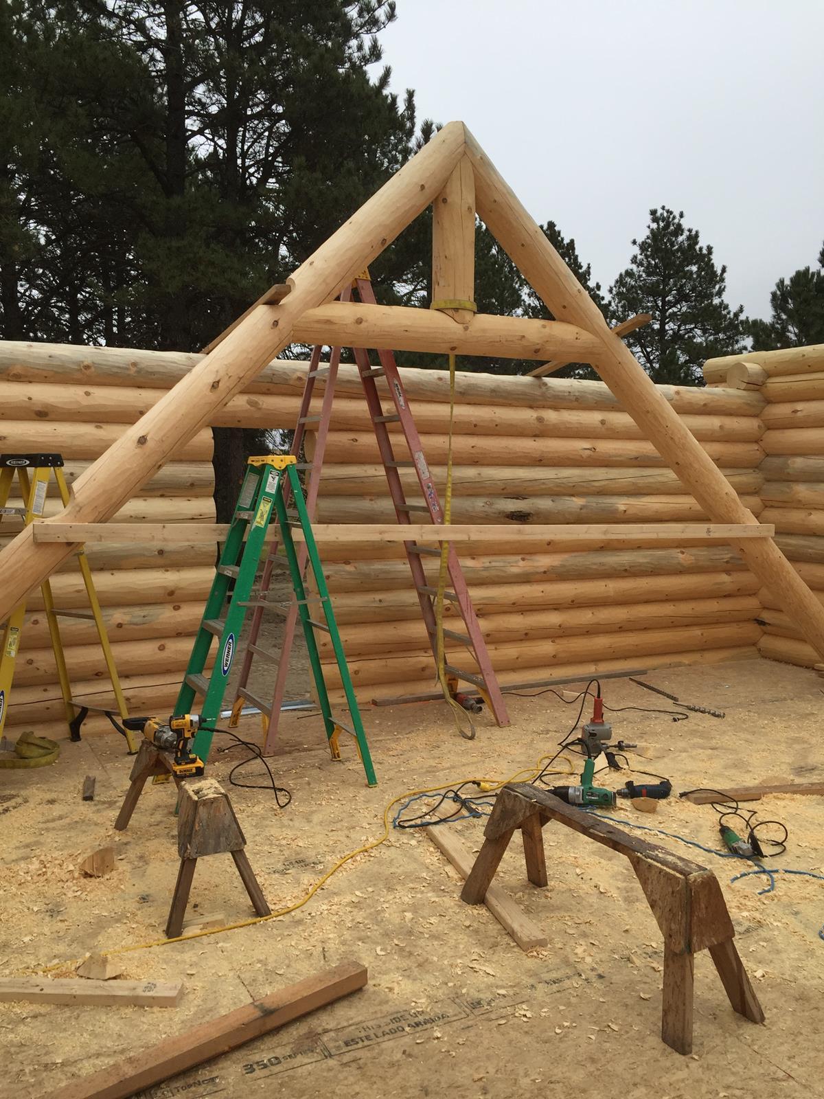 Logs Day 4 (11)