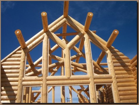 Log Gable End with Purlins in Place