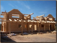 Log walls and Log porch rafters in place